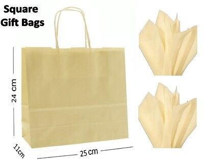 Ivory Cream Square Paper Party Gift Bags & Tissue Wrap ~ Boutique Shop Loot Bag