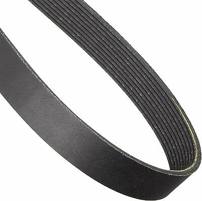 J Section Poly V Belts - 4,6,8 & 10 Ribs - FREE Postage