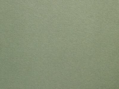 Sage Green Colorplan 270gsm Premium Quality Double Sided Matt Card Mid Green A4