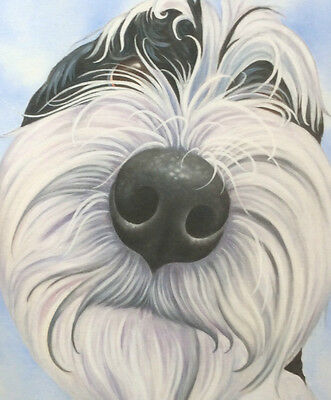 tibetan terrier painting on ready to hang CANVAS fine art print by Lizzie Hall