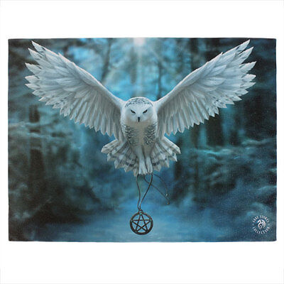 Anne Stokes Gothic Wicca Owl Awake Your Magic Canvas Print 70cm x 50cm