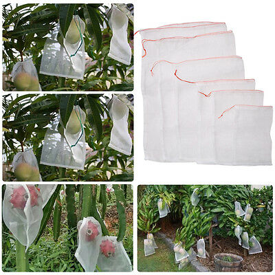 50PCS Garden Plant Fruit Protect Bag Sac Net #I Mesh Against Insect Pest Bird