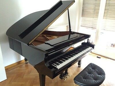 Professeur de music vend son piano à queue (9 ans)