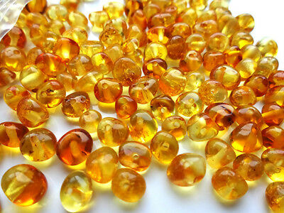 Real Baltic Holed Amber Loose Beads 50 beads+ plastic screw clasps .Choose color
