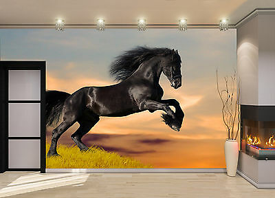 Black a Horse on the Hill Wall Mural Photo Wallpaper GIANT DECOR Paper Poster