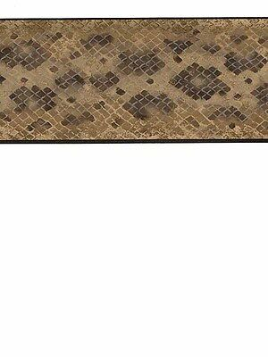 NA016143B Brown Snake Skin Print Wallpaper Border