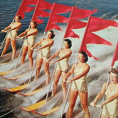 Aquamaids Cypress Gardens Postcard Waterskiing Pin Ups Florida Beauty on Parade