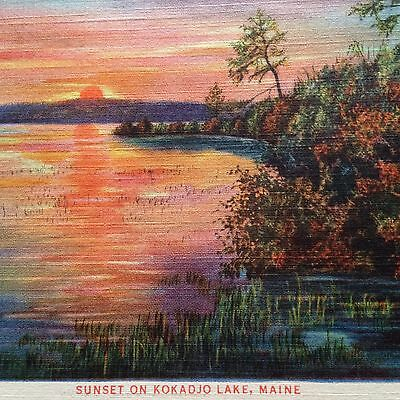 Kokadjo Lake, Maine Vtg Postcard Sunset 1934 Unused Frenchtown Township Linen
