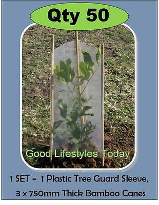 50 x TREE GUARDS SETS with bamboo stakes INCL FREE POST to QLD, NSW & VIC