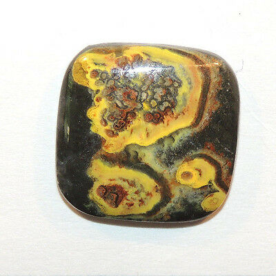 BumbleBee Jasper Cabochons 25x25mm from Indonesia 6mm thick  (11075)
