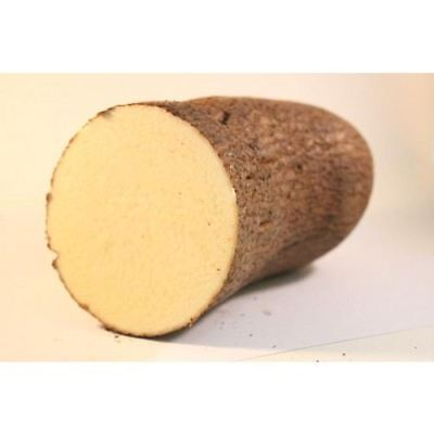 White Yam 1.5kg - Product of Ghana