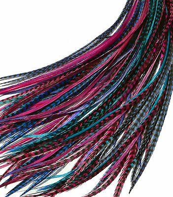 "Real Feather Hair Extensions 10 Ultra Super Long XXL 10-14""+  Berry Mix"