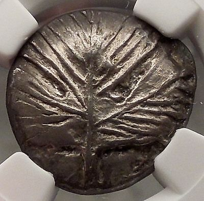 SELINOS in SICILY 540BC NGC AU Leaf Stater Rare Ancient Silver Greek Coin i57697