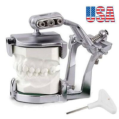US Adjustable Magnetic Articulator Dental Lab Equipment Dentist Full Teeth model