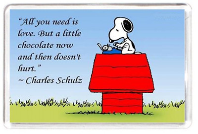 Fridge Magnet Love Choc Chocolate Hurt Dog Schulz Snoopy Character Quote Gift