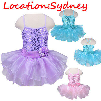 Girls Gymnastic Leotard Kids Ballet Dance Tutu Dress Shiny Skate Costumes 2-8Y