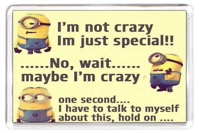 Fridge Magnet Minion Chararctor Not Crazy I'm Special Speak Myself Quote Gift