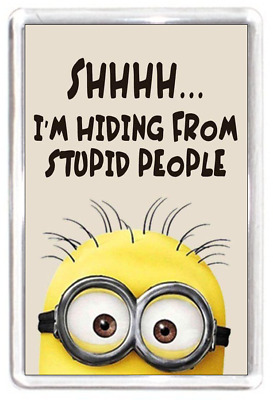 Fridge Magnet Minion Character Secret Hiding Stupid People Funny Quote Gift