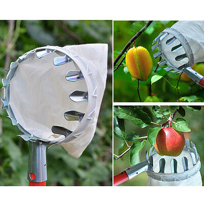 Altitude fruit picker basket apples pears plums picking Convenient Horticultural
