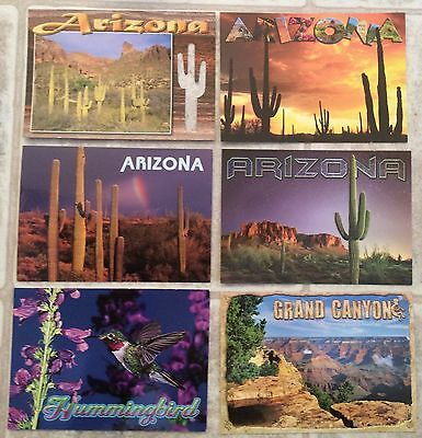 NEW Lot of 5 Arizona / Grand Canyon Post Cards (Postcards) YOU PICK THEM!