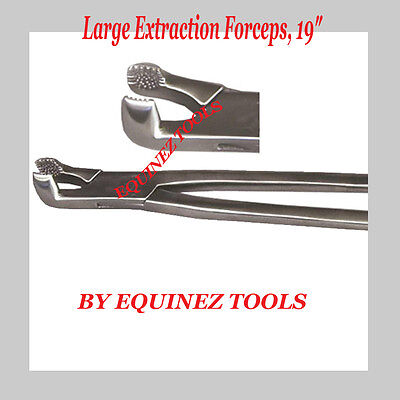 "19""Large Extraction Forceps, with Pouch, Stainles Steel,Equine dental"