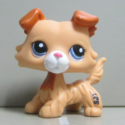 Hasbro Littlest Pet Shop Collection LPS Figure Yellow Tan Collie Dog #2452