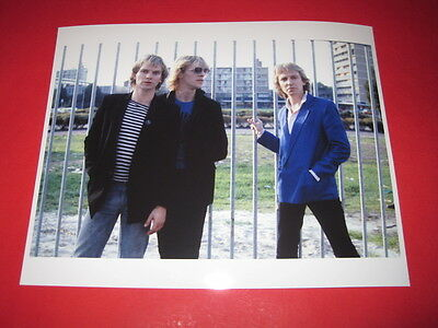 THE POLICE / STING  10x8 inch lab-printed photo P/8097