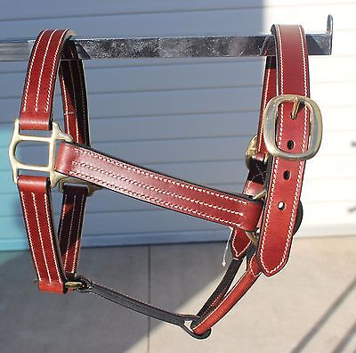 Leather Brown Fancy Head Collar Halter Brass Fits Horse Headcollar Pony Cob Full