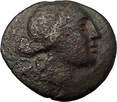AMPHIPOLIS in MACEDONIA 148BC RARE R1 Ancient Greek Coin ARTEMIS & GOATS i57655