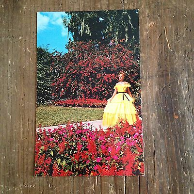 Southern Belle Cypress Gardens Vintage Postcard Florida Unused Yellow Hoop Dress