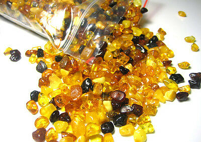 5 gr. Natural Baltic Amber Loose Drilled beads about 65-70 beads + plastic screw