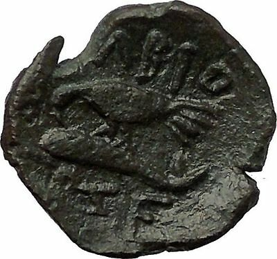 OLBIA in THRACE 180BC Demeter Sea Eagle Dolphin RARE Ancient Greek Coin i57678