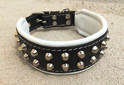 "Bestia ""Rocky"" studded leather dog collar. S or M size, French bulldog design"