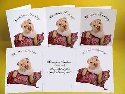 Shar Pei Puppy pack of 6 Dog Christmas Cards with a choice of 3 verse