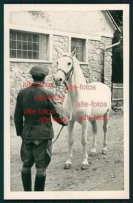 Tiere - animal - Vintage Photo Foto -  Pferd - Pferde - horse