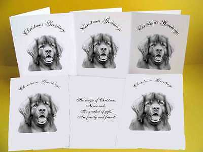 Leonburger pack of 6 Dog Christmas Cards with a choice of 3 verse