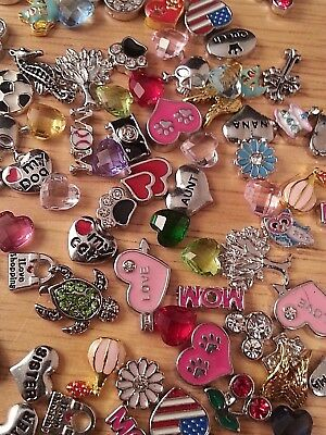 Love Heart Charms for Floating Lockets Family fits Owl Lockets