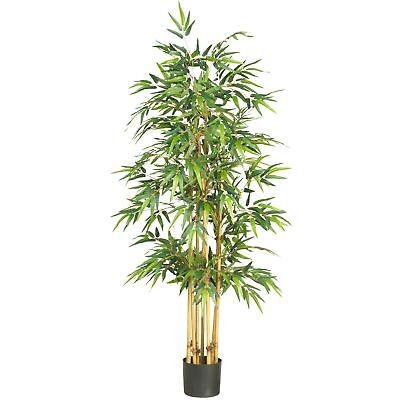 "5'4"" Japanese Bamboo Silk Tree w/Pot -1,040 Leaves"