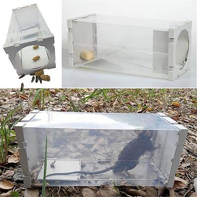 New Transparent Rat Cage Mice Rodent Animal Hamster Mouse Trap Humane Box