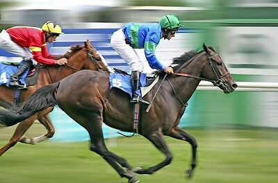 The Only Betfair 100% Guaranteed Profitable Horse Racing System