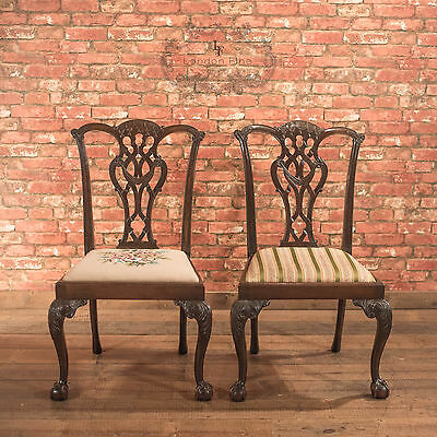 Pair of Antique Dining Chairs Victorian after Chippendale English Mahogany c1900