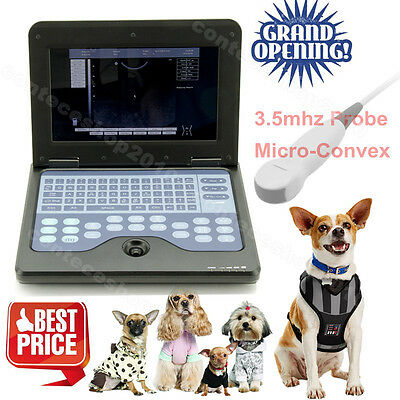 CE Vet laptop Ultrasound Scanner Machine for Cat/dog/animal Micro-convex
