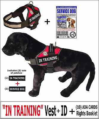 """""""IN TRAINING"""" - VEST + ID + Tag + Rights Card/Booklet + (2) Service Dog Patches"""