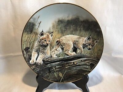 Mountain Lion From Nature's Playmates Collection Fine China Plate