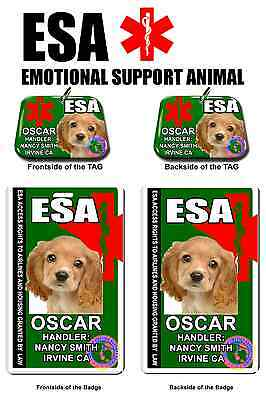 Emotional Support Animal medical symbol Pet id tag service dog personalized