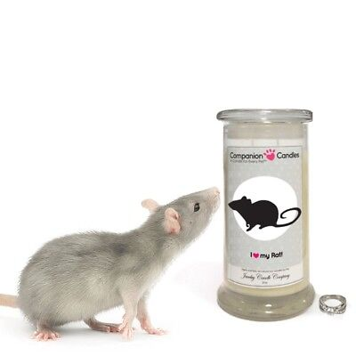 I Love My Rat! - Companion Candles
