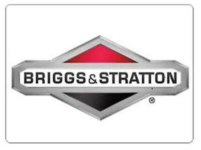 Briggs /& Stratton OEM 261105 replacement spring-governor