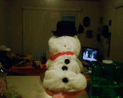 DOG COSTUME Snow Person NWT Small SALE BENEFITS CHARITY