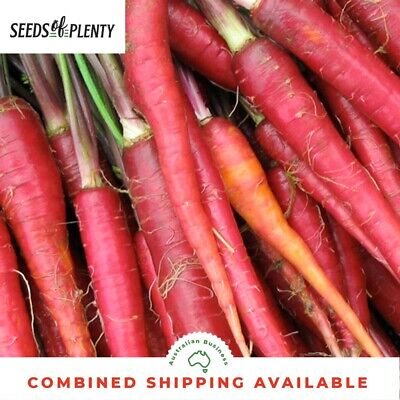 CARROT - Atomic Red (400 Seeds) BULK, Heirloom, MILD FLAVOUR, Direct Sow Seeds