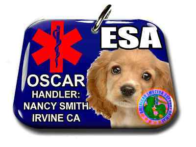Service Emotional Support Animal medical symbol pet tag dog ID card personalized